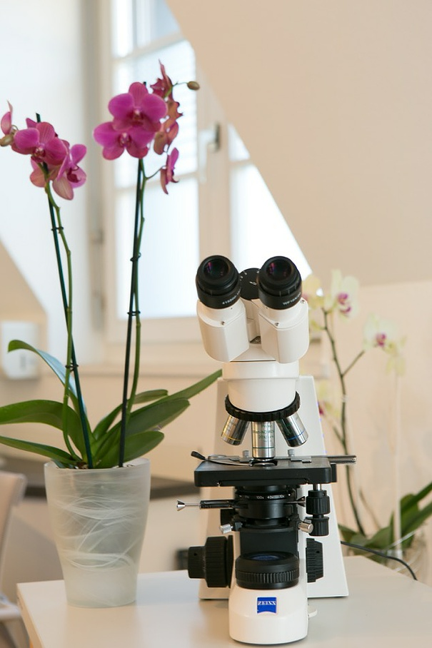 Microscope - The practice of Dr. med. Erika Ocon - Basel